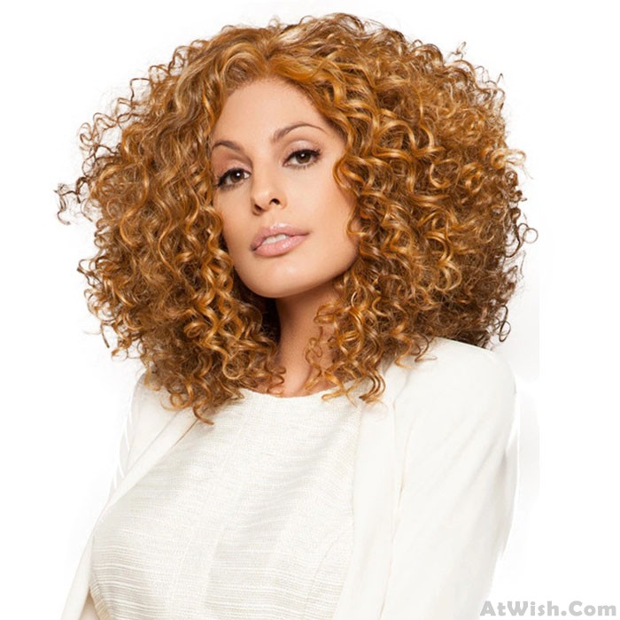 New Fluffy Long Wavy Curly Women's Curls Lace Hair Wig