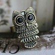 Lovely New Accessory Owl Ring