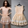 Sweet Organza Embroidered Stitching Lace Vest Dress