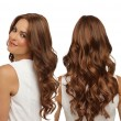 Fashion African Brown Big Wavy Long Curly Lady Hair Wig