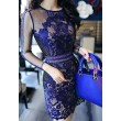 Retro See Through Bodycon Lace Mesh Crocheted Dress/Party Dress