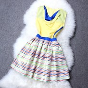 Wave Point Embroidery Color Matching Dress