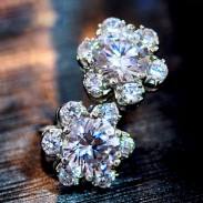 Sweet Edelweiss Zircon Silver Ear Studs Earrings