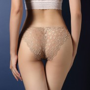 Sexy Lace Underwear Transparent Panties Luxury Flower Lace Women Intimate Lingerie