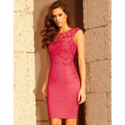Rose Red Embroidered Stretch Lace Dress
