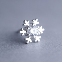 Cute Shining Winter Diamond-bordered Snowflake Silver Women's Earring Studs