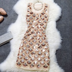 Shell Sequined Lace Party Dress/Evening Dress