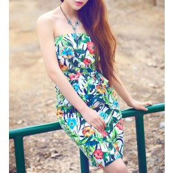 Summer Flowers Printing Chiffon Beach Halter Dress